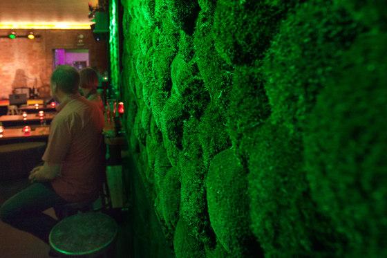 Greenhill Mooswände von Freund | Schalldämpfende Wandbilder / Bildflächen