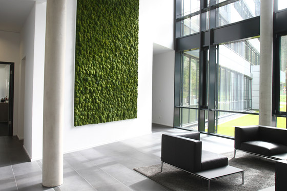 Greenhill Moss walls by Freund | Sound absorbing wall art