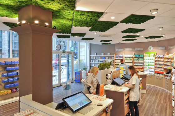 Greenhill Moss walls by Freund | Acoustic ceiling systems