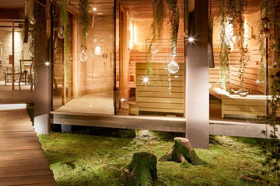 Greenwood Moss by Freund   Flooring