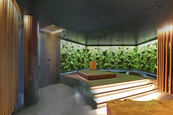Greenwood Moss by Freund   Living / Green walls