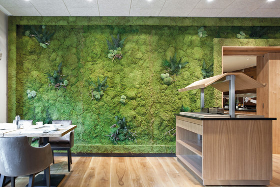 Greenwood Extra by Freund   Living / Green walls