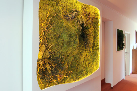 Greenwood Extra by Freund | Sound absorbing wall art