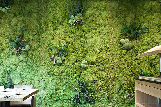 Greenwood Extra by Freund | Living / Green walls