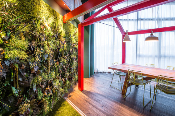 Greenwood Jungle de Freund | Cuadros de pared fonoabsorbentes