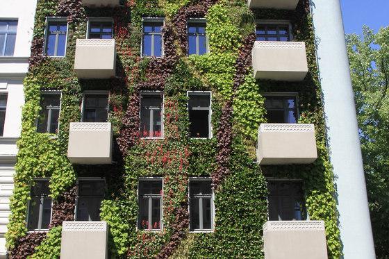 Live Panel vertical garden by Freund   Facade systems