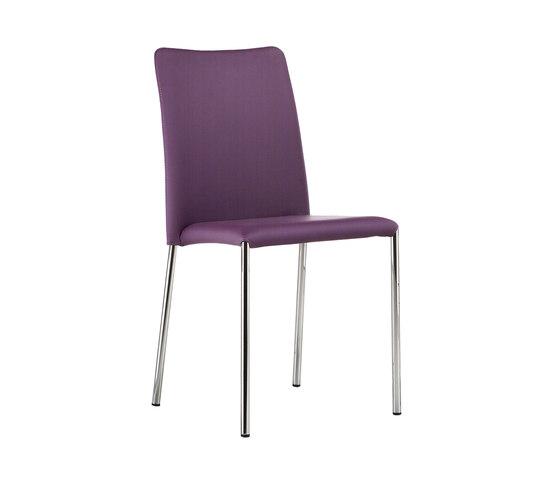 Silvy SB by Midj | Chairs