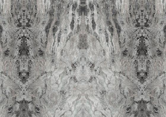 Amazzonia Grey de TECNOGRAFICA | Arte