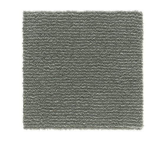Iris |Silver Blue 8377 by Kasthall | Wall-to-wall carpets