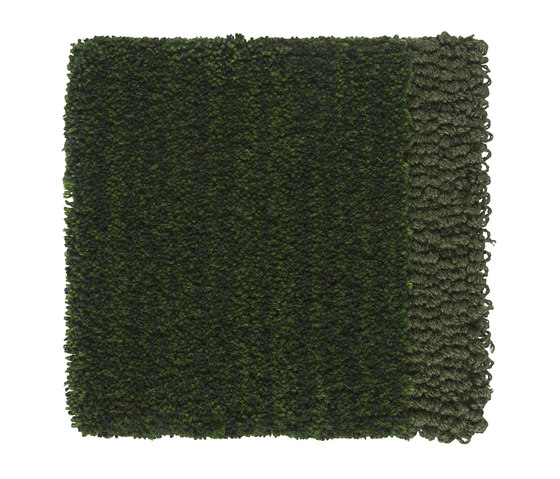 Classic | Forest Green 302 by Kasthall | Rugs