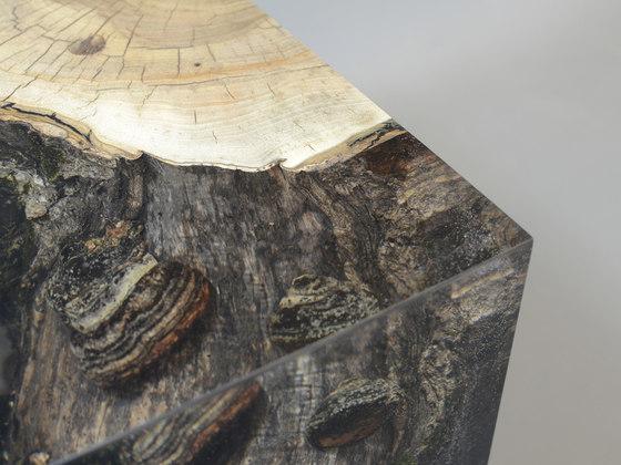 Fungi | Stool Walnut de Alcarol | Taburetes