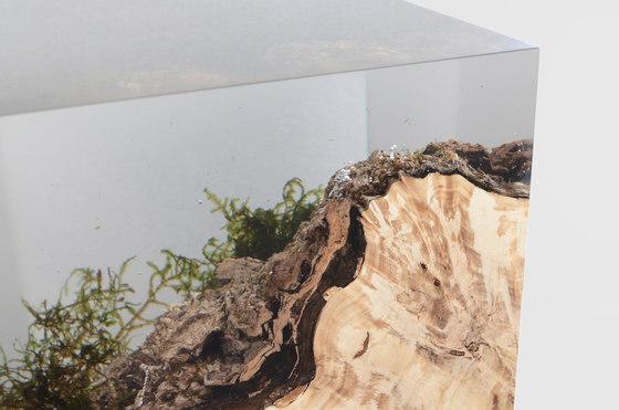 Undergrowth | Stump Stool de Alcarol | Taburetes