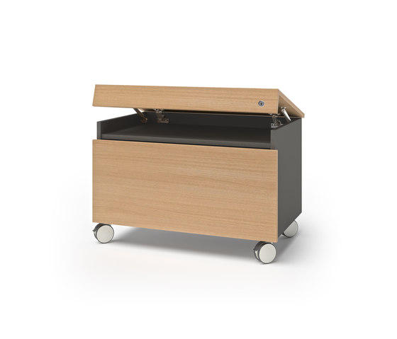 container | Caddies di werner works | Cassettiere ufficio