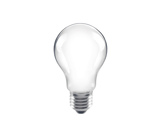 LED Bulb frosted by Segula | Light bulbs