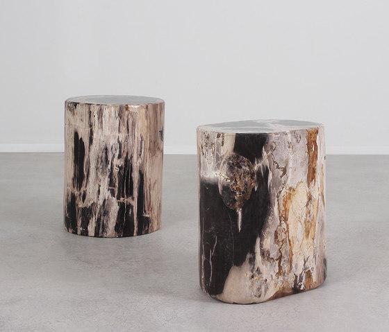 Dappled Petrified Wood Log Table di Pfeifer Studio | Tavolini alti