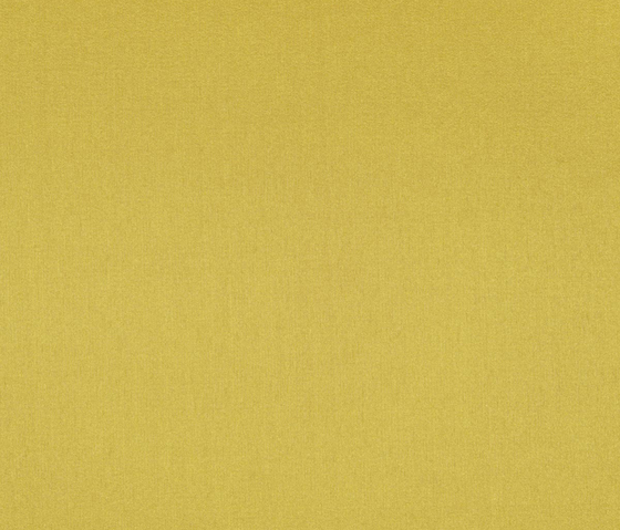 Taffetas XXL 10662_75 by NOBILIS | Drapery fabrics