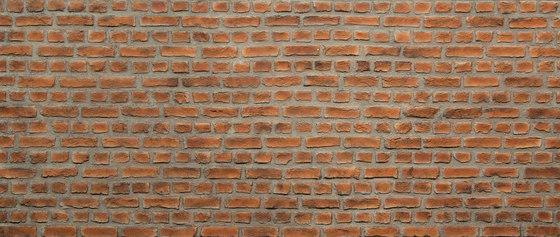 Ladrillo Loft Cure Rojo by Artstone | Wall veneers