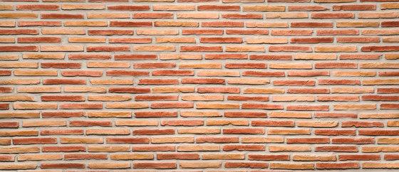 Ladrillo Multicolor by Artstone | Wall veneers