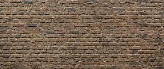Ladrillo Vintage Earth Eclectic by Artstone | Wall veneers
