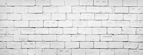 Heritage XVIII Blanca by Artstone   Wall veneers