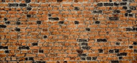 Heritage Loft Rojo by Artstone   Wall veneers