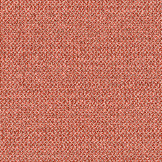 Credo Grapefruit by rohi   Drapery fabrics