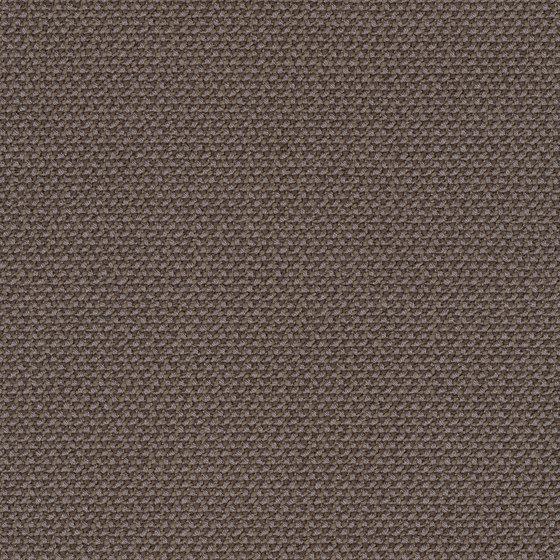 Credo Walnut by rohi | Drapery fabrics