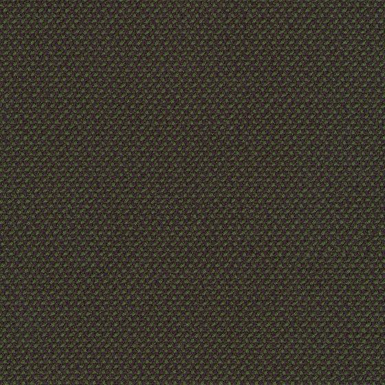 Credo Forest by rohi | Drapery fabrics
