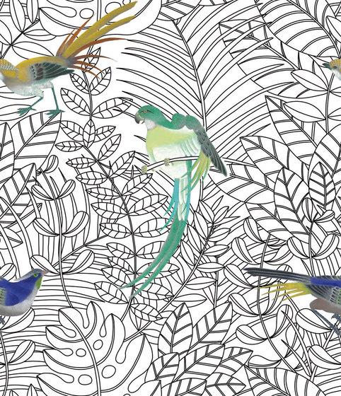 Amazone COS140 di NOBILIS | Carta parati / tappezzeria