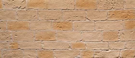 Picada Castellana by Artstone | Wall veneers