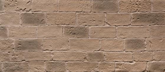Picada Terrosa by Artstone | Wall veneers