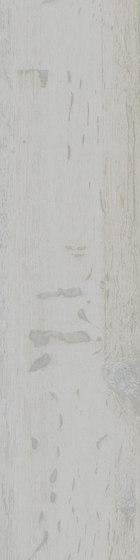 U-COLOR 24 de 41zero42 | Carrelage céramique