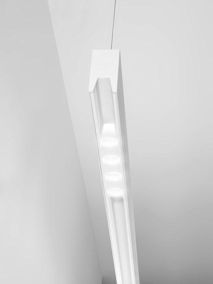 Anvil S LED Module de B.LUX | Iluminación general
