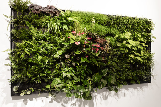 2M2 Green Screen by Greenworks | Sound absorbing wall art