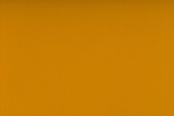 AVANTGARDE™ AMBER by SPRADLING | Upholstery fabrics