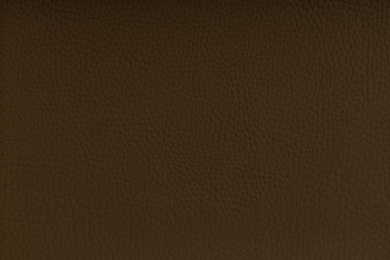 CHRONOS™ TEAK by SPRADLING | Upholstery fabrics