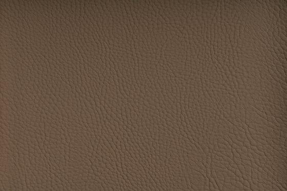 CHRONOS™ PORTOBELLO by SPRADLING | Upholstery fabrics