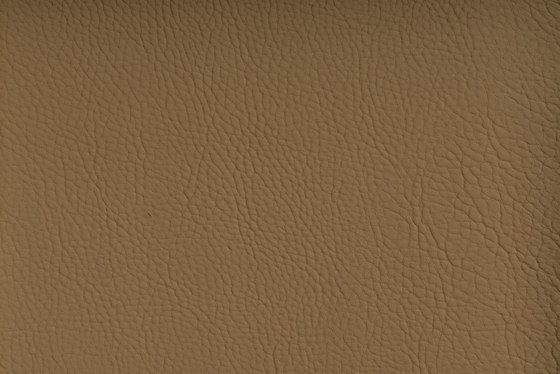 CHRONOS™ SESAME by SPRADLING | Upholstery fabrics