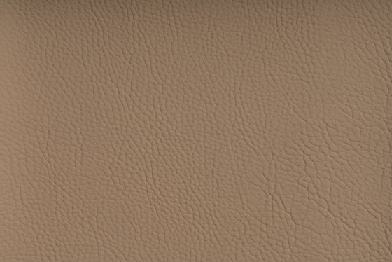 CHRONOS™ MUSCAT by SPRADLING   Upholstery fabrics