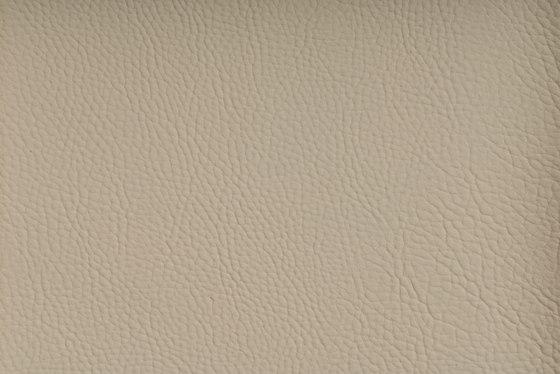 CHRONOS™ MARZIPAN de SPRADLING | Tejidos tapicerías