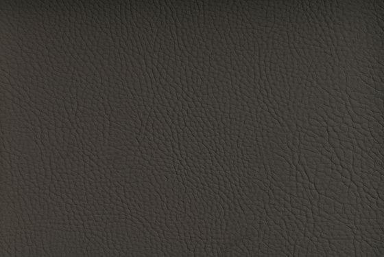 CHRONOS™ NIMBUS de SPRADLING | Tejidos tapicerías
