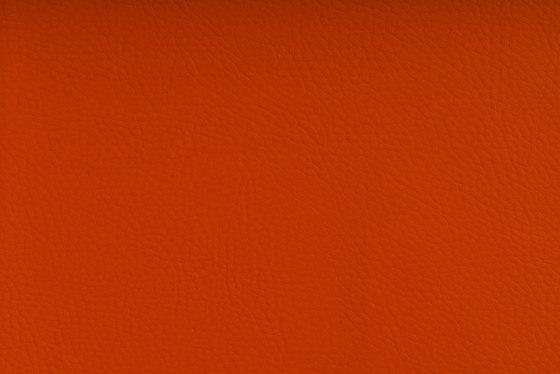 CHRONOS™ ORANGE de SPRADLING   Tejidos tapicerías