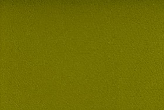 CHRONOS™ PISTACHIO de SPRADLING | Tejidos tapicerías