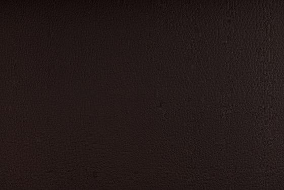 DELTA CHOCOLATE by SPRADLING | Upholstery fabrics