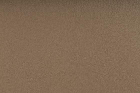 DELTA ARENA by SPRADLING | Upholstery fabrics