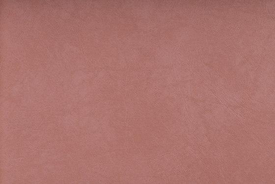 SIERRA C5 LACHS by SPRADLING | Upholstery fabrics