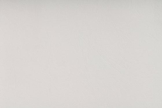 SIERRA C5 WEISS by SPRADLING   Upholstery fabrics