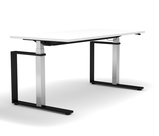 Sit Stand Desk Masterlift® 3 by Inwerk | Contract tables