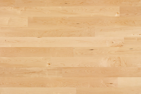 Cleverpark Maple canadian 14 by Bauwerk Parkett | Wood flooring