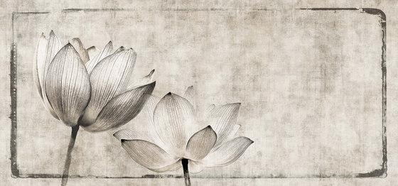 canvas | lotus by N.O.W. Edizioni | Wall art / Murals